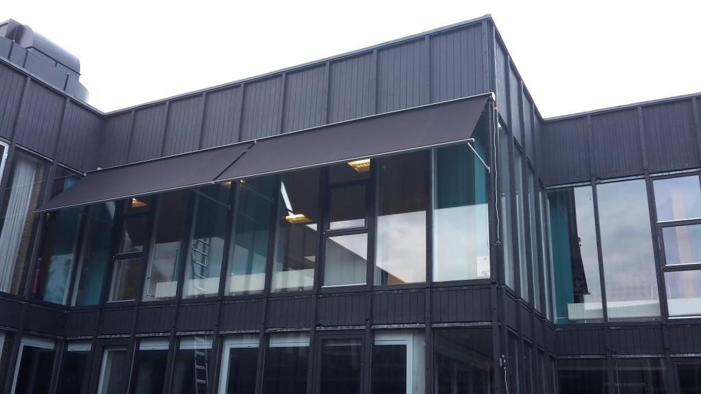 aarhus institutioner biografer i Horsens